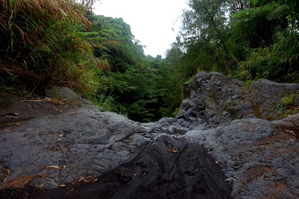 Die Vulkantour auf Ambrym führt durch den Dschungel in dieser Lavarinne.