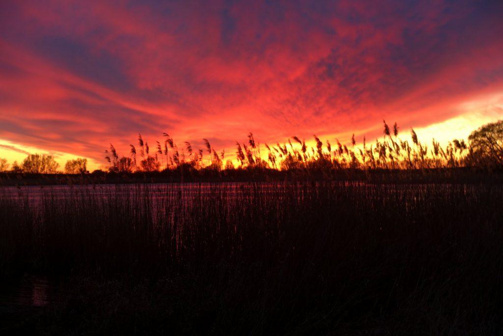 Sonnenuntergang am Blankenburger See.