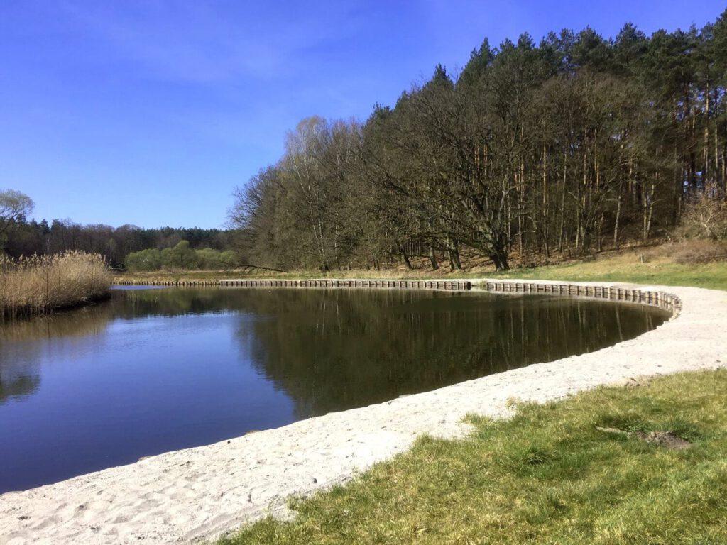 Havel im Naturpark Uckermärkische Seen.