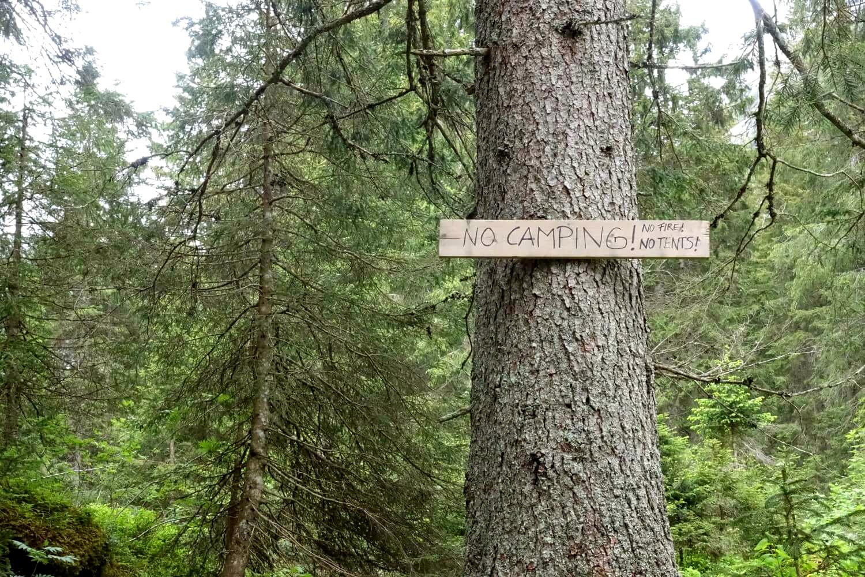Baum mit Camping verboten Schild.