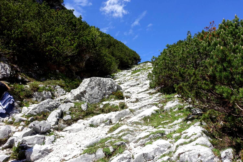 Aufstieg über Schrofenfelder zur Knorrhütte.