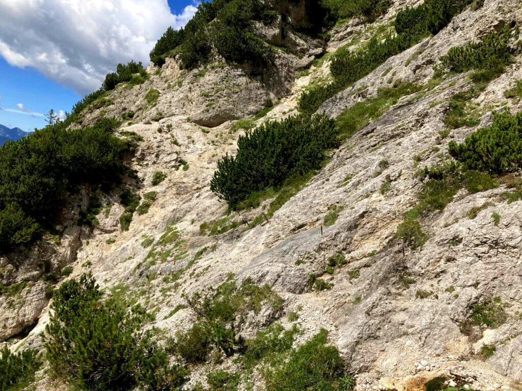 Steiles Schrofengelände an der Südwand des Prisonjik.