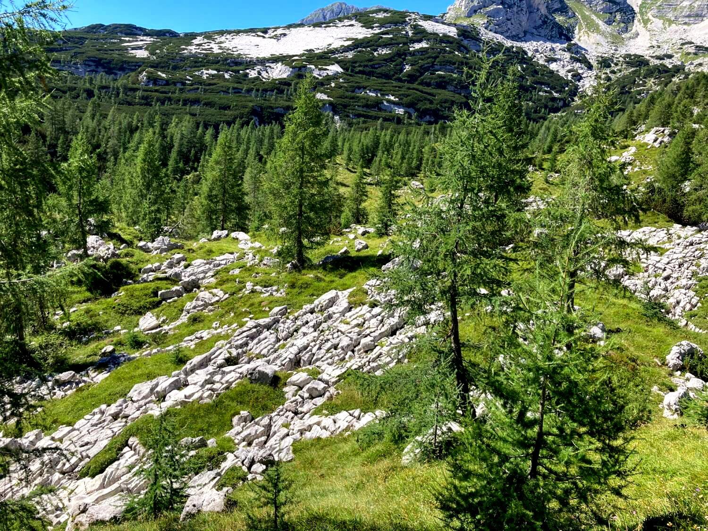 Karstlandschaften im Triglav-Nationalpark.