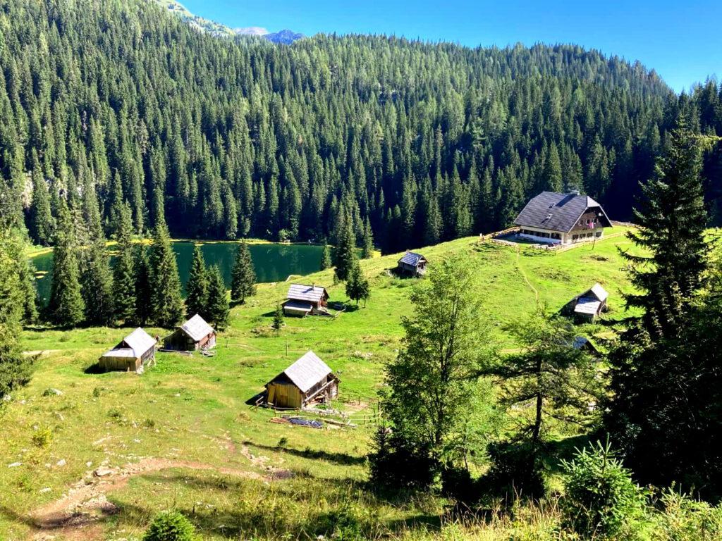 Ausblick auf die Alm Koča na Planini pri Jezeru.