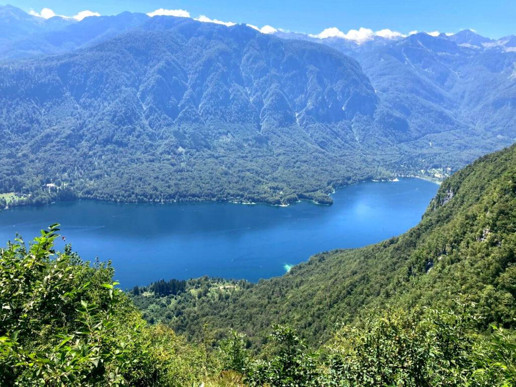 Blick auf den Bohinj-See.