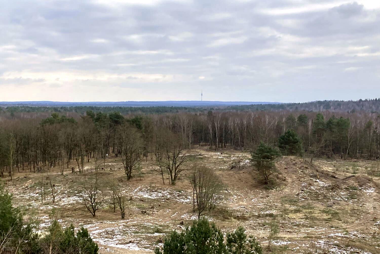 Blick vom Finkenberg zum Berliner Fernsehturm.
