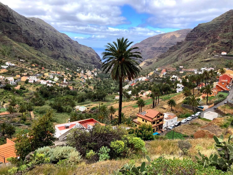 Blick auf das Valle Gran Rey mit Palme.