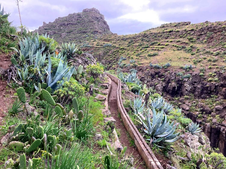 Levada in La Gomera La Matanza.