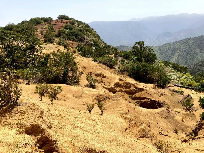 Höhenweg in der Cumbre de Chijere in La Gomera.