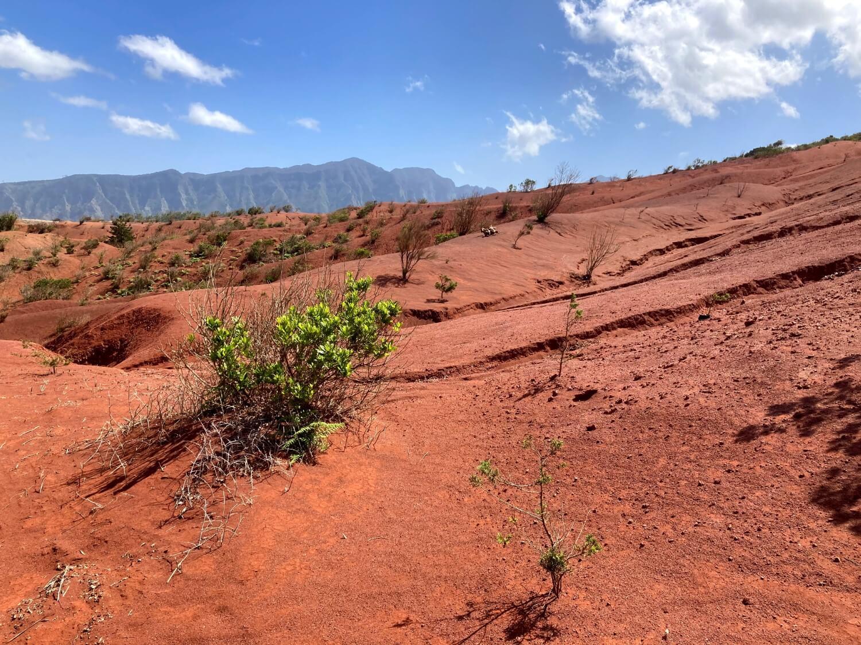 Marslandschaft Cañada Grande beim Wandern in La Gomera.