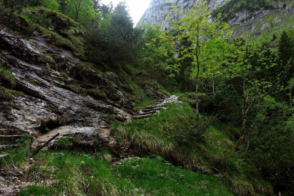 Stangensteig Weg über dem Zauberwald.
