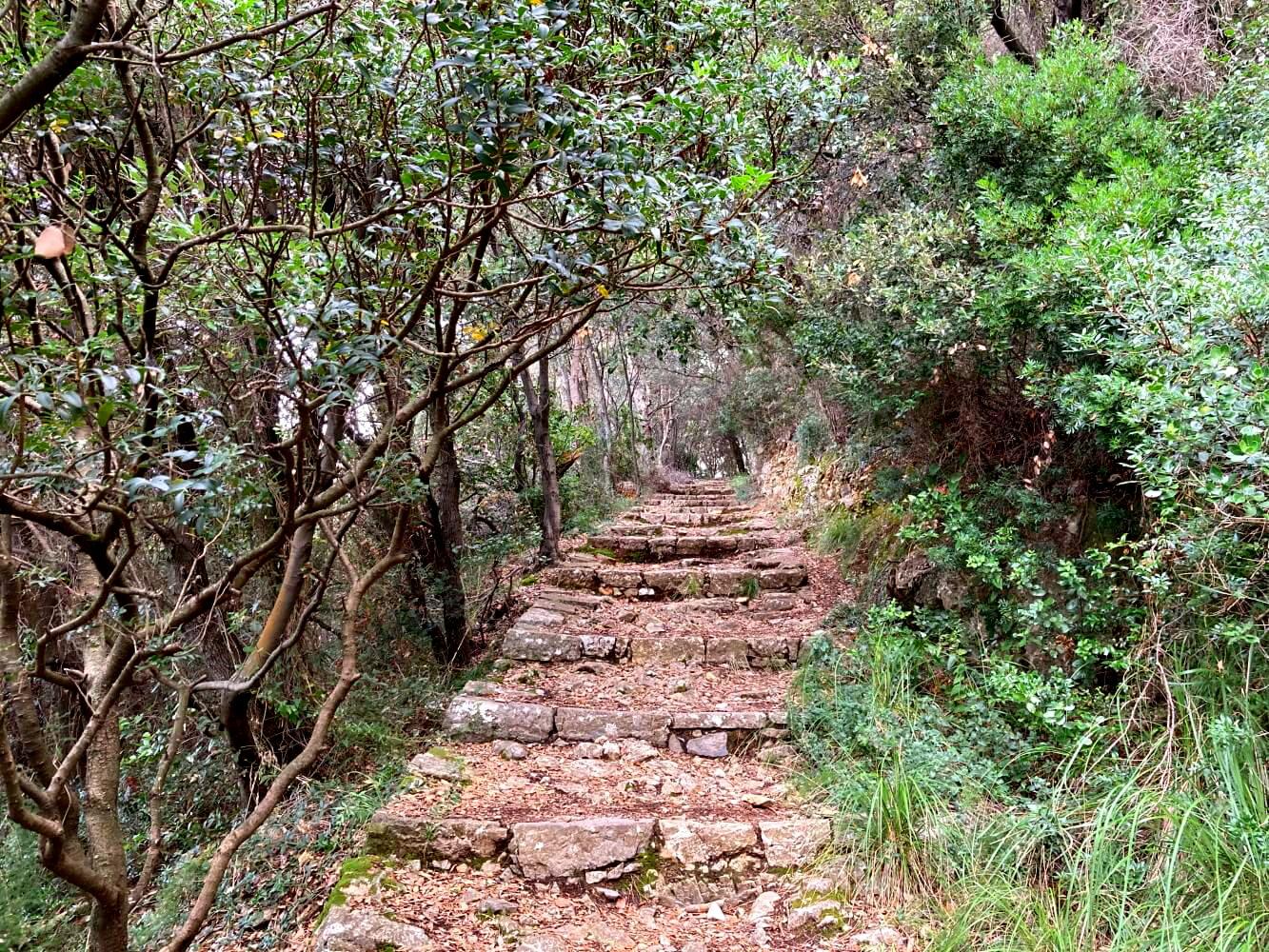 Treppenweg auf Palmaria.