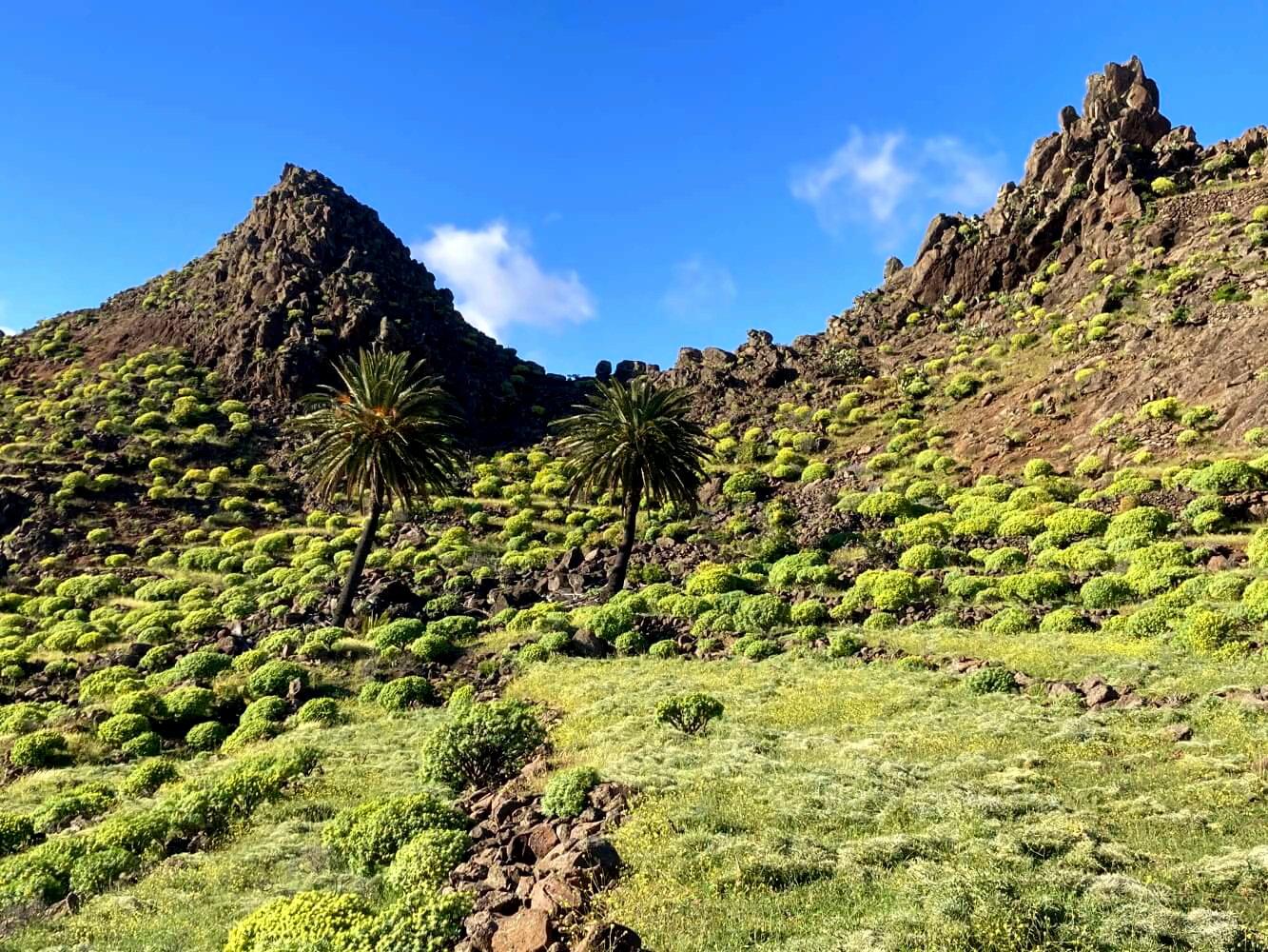 Wandern im Süden von La Gomera auf dem GR 132.