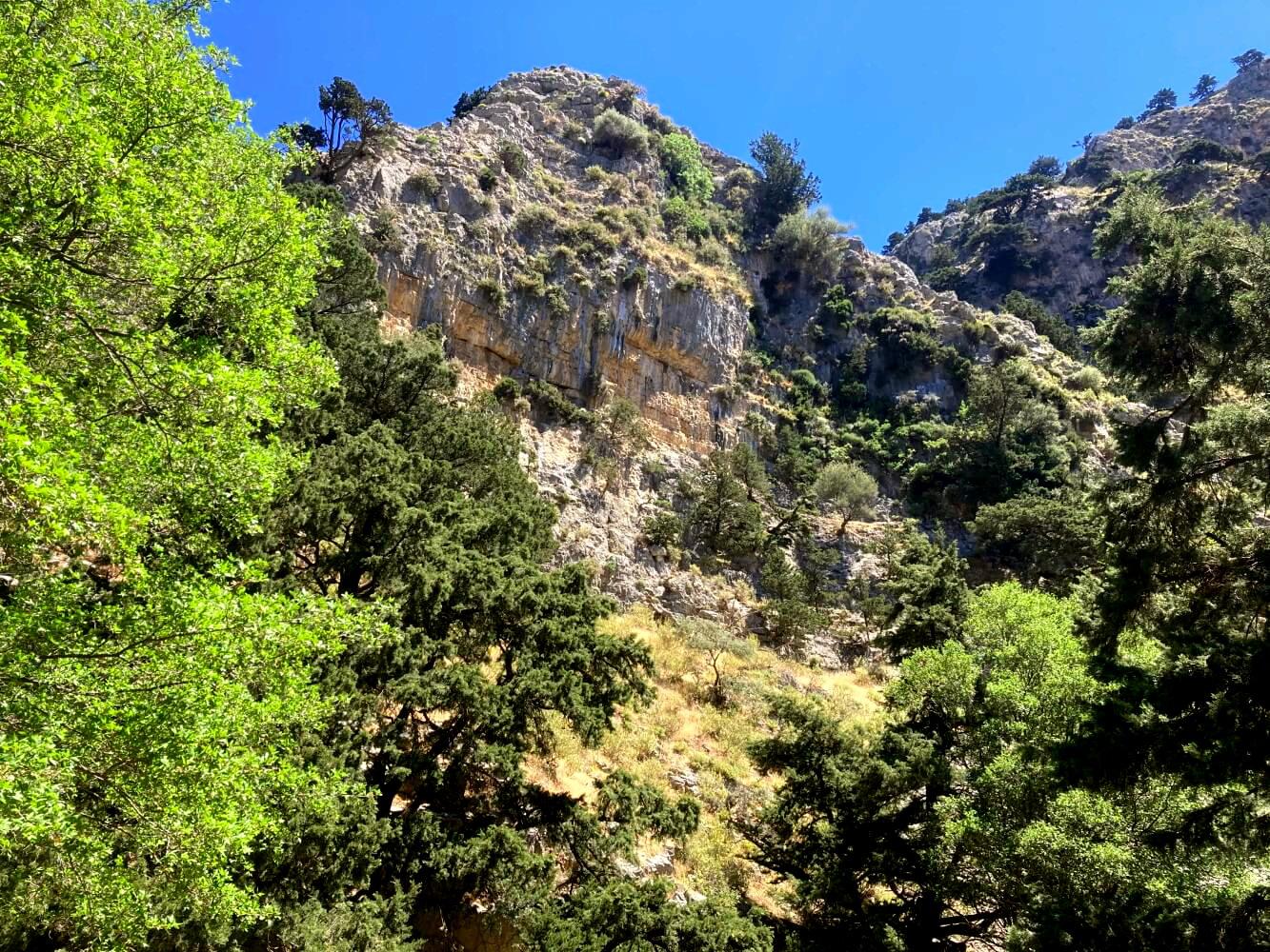 Imbros-Schlucht in Kreta.